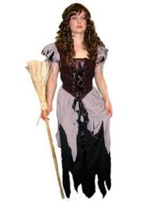 anyhire sinderella costume for rent/hire in australia